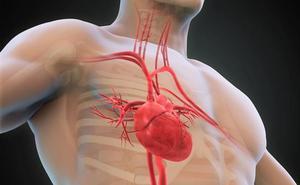 Identifican un biomarcador de pronóstico de la insuficiencia cardíaca