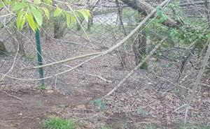Fotodenuncia: Agujero peligroso en el parque Otxanda, Munto