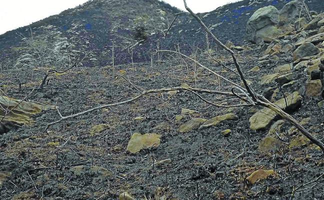 La Diputación pide un año de prisión para tres guardias civiles por causar un incendio