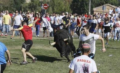 El Supremo cierra a Tordesillas la última vía para defender el Toro de la Vega