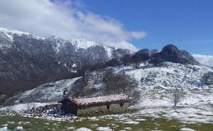 La nieve sepulta las flores de primavera que brotaron en Urbia hace dos semanas