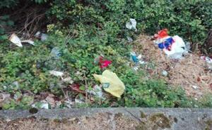 Fotodenuncia: Basura en la bajada de la calle Egia