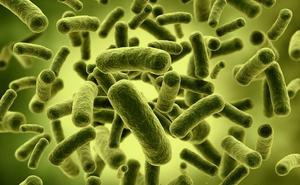 Alertan de que en 2050 la mortalidad por infecciones podría superar al cáncer