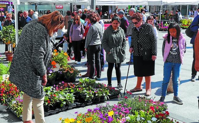 Feria de las flores y plantas