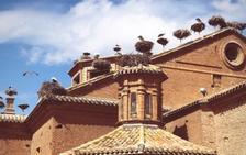 Alfaro, la casa de las cigüeñas