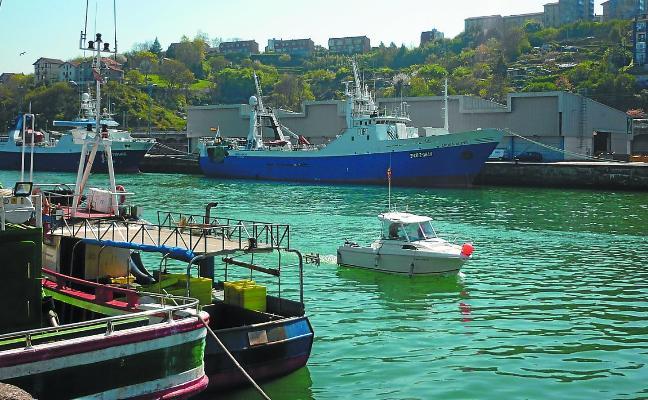 Azti asegura que el cambio climático redistribuirá en el futuro los atunes