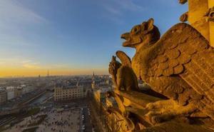 Cosas que debes saber de la catedral, entre las gárgolas diabólicas y el jorobado