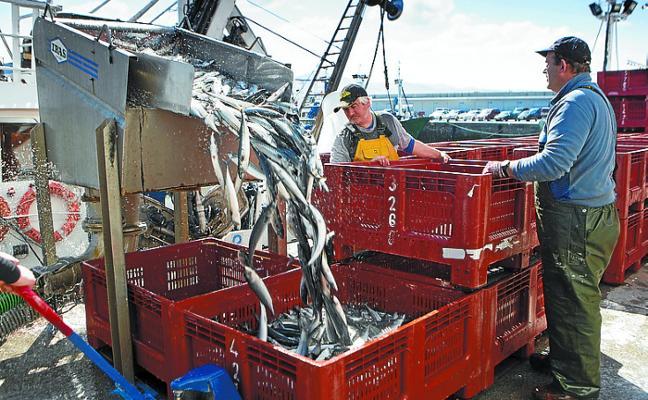 La Cofradía y BM Supermercados prorrogan su acuerdo sobre la merluza