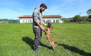 Las entidades Kireba y Miauka dejan de recoger animales de la vía pública