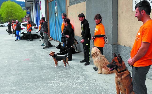 Buena participación en las jornadas caninas de Xuhakan Txakur Elkartea