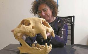 La reproducción en 3D del cráneo del león cavernario ya está en Arrikrutz