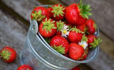 Estos son los alimentos de primavera que te van a ayudar a depurar el organismo