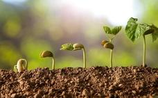 El reto de los agricultores ante las semillas ecológicas, a debate en Vitoria