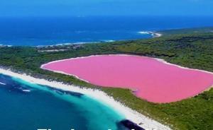 El misterio del lago rosa