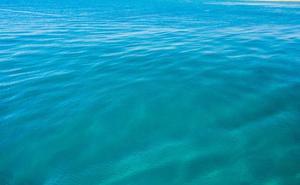 Descubren una nueva forma de vida en el Océano Pacífico que respira arsénico