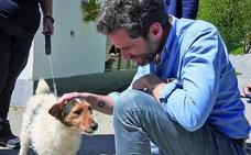 Elecciones 26M: Sémper plantea trasladar a Ametzagaina el parque para perros 'Guau' de Amara