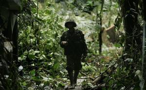 El Ejército colombiano destinará el 10 % de sus efectivos a proteger el medioambiente