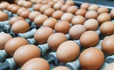 La prueba para saber si un huevo está fresco o hay que tirarlo