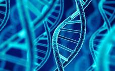 Investigadores daneses identifican un gen asociado a un mayor riesgo de desmayo