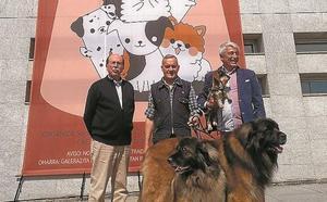 Nuevas razas debutan en la Exposición Canina de Gipuzkoa, que cumple 40 ediciones