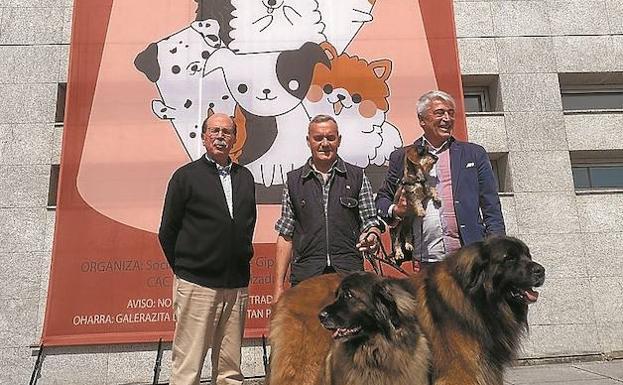 Javier Redondo, Gerardo Dané y José María Iturralde con un teckel y dos leonberger. / F. DE LA HERA