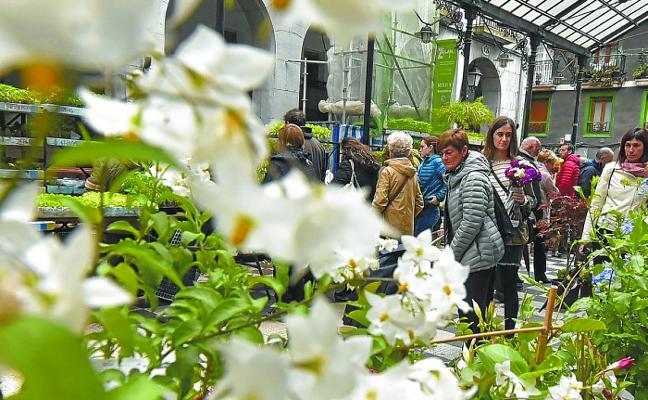 Entre flores, txapelas, música y museos