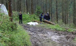 Fallece un trabajador alcanzado por un árbol en Zestoa