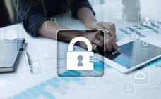 La Ertzaintza gestionó el pasado año casi 13.000 delitos relacionados con la ciberseguridad, un 38% más que en 2017