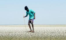 La peor sequía en siete décadas