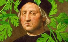 El perejil de Colón