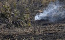 Estabilizado el incendio de Huelva, en el que siguen trabajando más de 100 bomberos