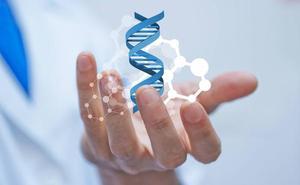 Desarrollan un nuevo modelo matemático para ver cómo interactúan los genes