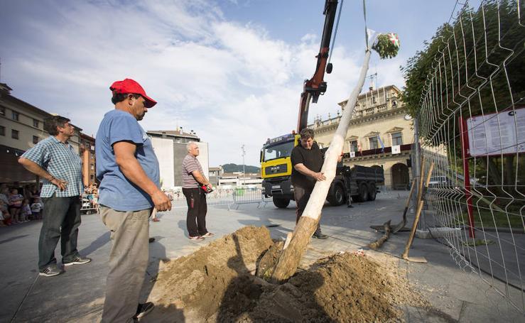 Colocación del tradicional árbol de San Juan