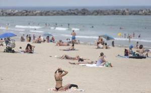 Pautas para seguir ante la ola de calor de esta semana