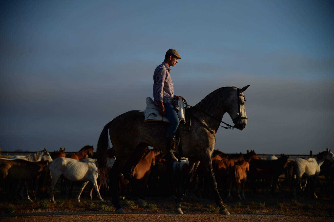 La esencia de Doñana, al descubierto con la 'Saca de las Yeguas'