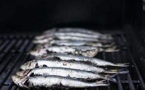 El verano, la estación para la sardina