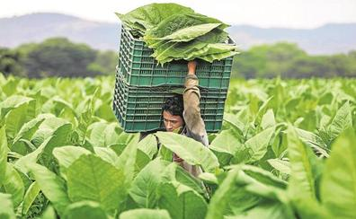 Nicaragua huele a Cuba