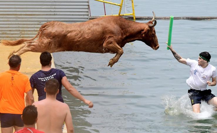 ¡Toro al agua!