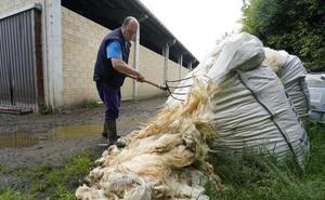 Ikea quiere comprar la lana vasca