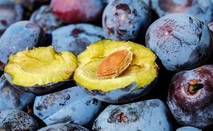 Frutas de hueso: un regalo veraniego para nuestra salud