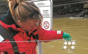 Azti lidera un proyecto que evalúa la contaminación del agua del mar