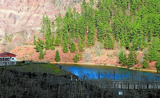 El sábado tendrá lugar la primera visita del año a la Reserva Forestal del Añarbe