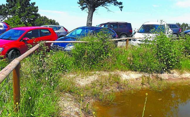 Solicitan limitar el acceso de vehículos privados a Mendiola