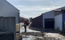 El incendio en una quesería de Getaria se salda con 15 ovejas muertas y la pérdida de miles de kilos de queso
