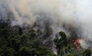 Bolsonaro culpa a ONGs de provocar el incendio en el Amazonas