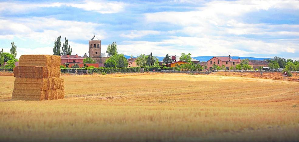 Arcadia rural