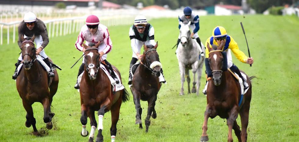 Los caballos de Óscar Anaya están que se salen