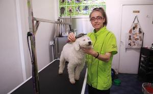 Sandra Castro, sin estrés: «Los perros son uno más de la familia y yo aquí los trato como tal»