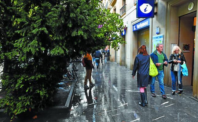 La vegetación corta el paso en el Boulevard