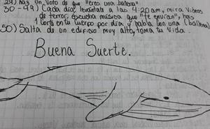 La Fiscalía revela el primer caso de suicidio de una menor en Gipuzkoa tras el reto de la 'ballena azul'